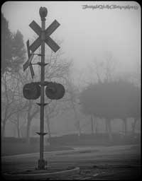 A shot of the signal heads at Valencia that were replaced a few years later. This time before the morning fog had burned off.